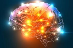 brain-grid-720x480